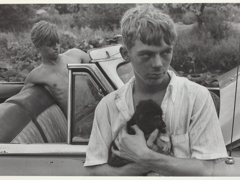 Danny Lyon, Boy with Dog, Knoxville, Tennessee, 1967